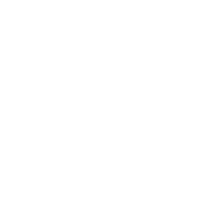 icona SECURITY PERFORMANCE MANAGEMENT